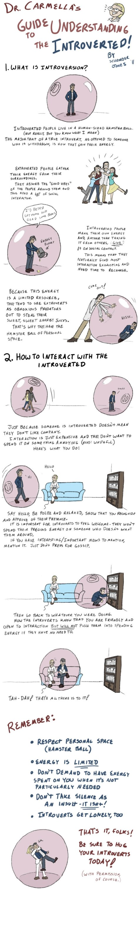 how_to_live_with_introverts_by_schrojones-d4tfoyo